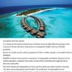 Island of Brunei
